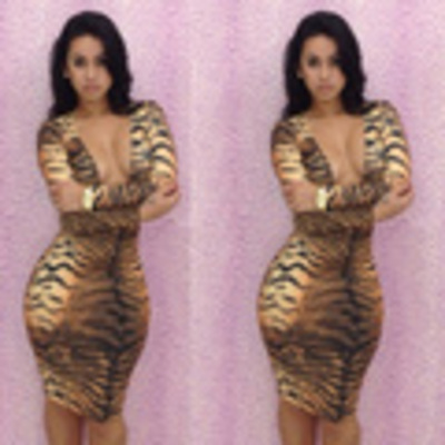 V-neck leopard print dress