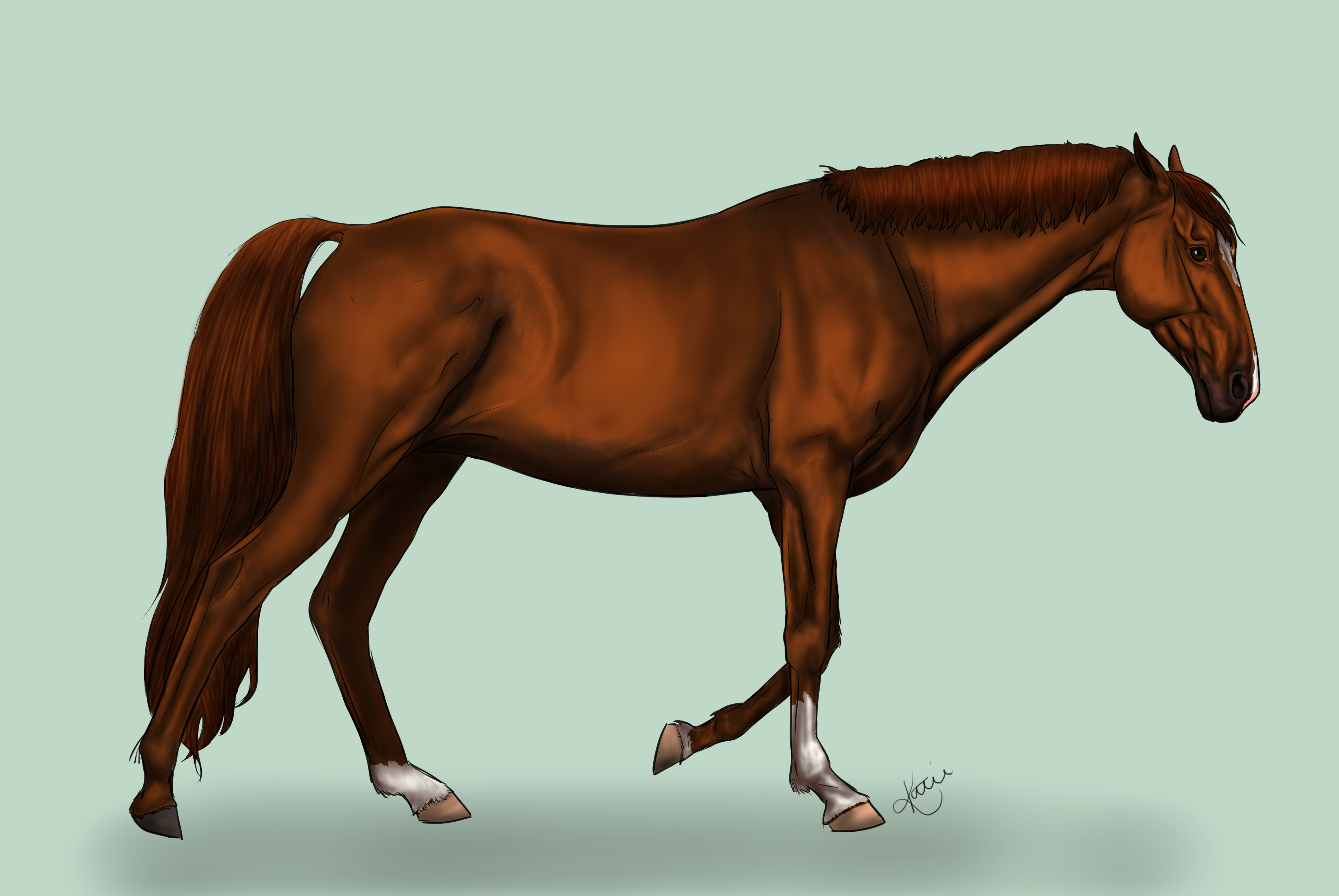 Realistic Horse Painting