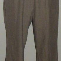 Tan Pants-Liz Lange Maternity Size 10