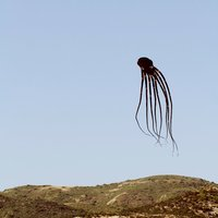 Octopus Kite Starter Kit (black) - Thumbnail 3