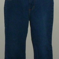 Denim Jeans with Fringe at Bottom-A. Gold E by Citizens of Humanity Size Small