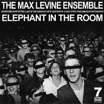 The Max Levine Ensemble - Elephant In The Room 7""