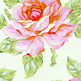 Hello_roses_cream_small