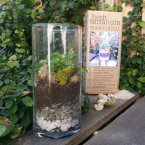 Herb-terrarium_1024x1024_medium