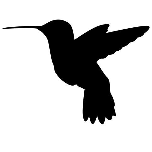 Humming Bird Auto Sticker Decal On Storenvy