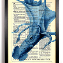 Image of Squid, Vintage Dictionary Print, 8 X 10