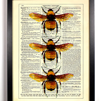 Image of Three Honey Bees, Vintage Dictionary Print, 8 x 10