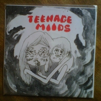 "TEENAGE MOODS - 'SUGAR BAND'/'FLOWER HUNTING' 7"" (SALVAGED PRODUCTION)"