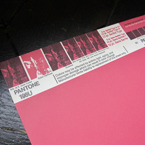 Vintage PANTONE® Poster - 198U - REDUCED PRICE