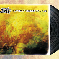 311- Grassroots(1st time on vinyl) - Thumbnail 2