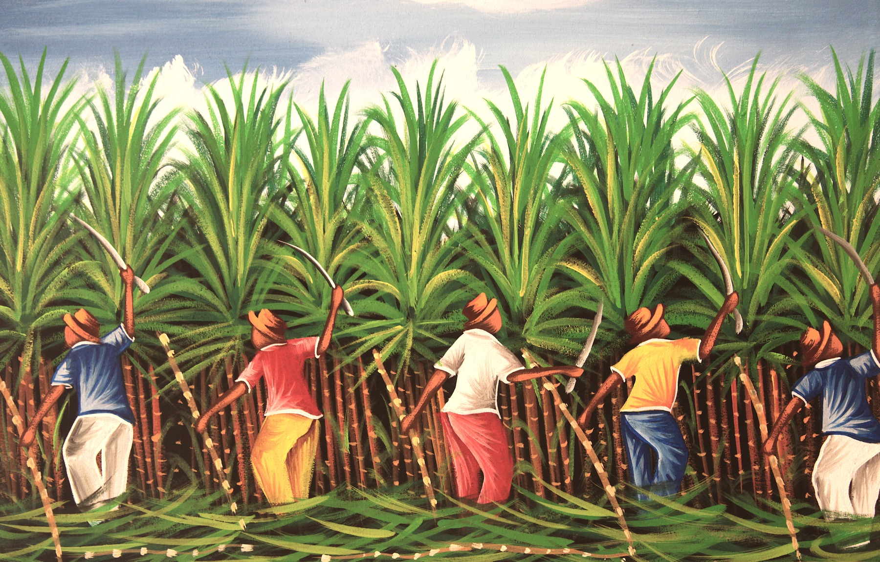 effects of sugar revolution in the caribbean Two-thirds of the slaves worked on sugar plantations in the caribbean some of which turned out to be britain's industrial revolution in the late 18 th and early 19 th centuries pirates of the caribbean: sugar & slavery.