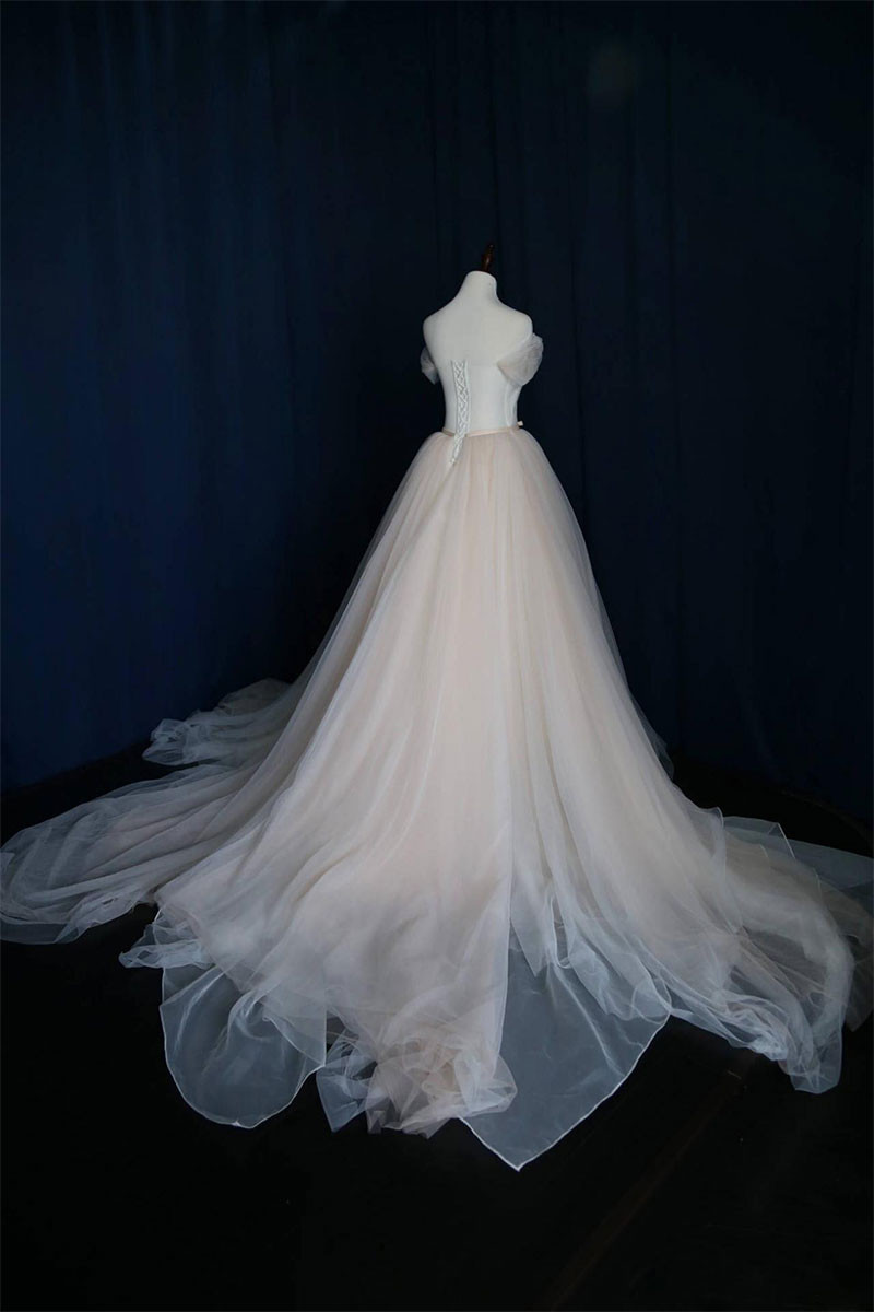 Simple Light Champagne Tulle Long Prom Dress Champagne Tulle - Light Wedding Dress