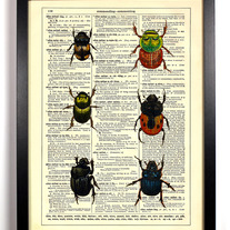 Image of Beetle Bugs, Vintage Dictionary Print, 8 x 10