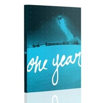 One Year Snowboard DVD