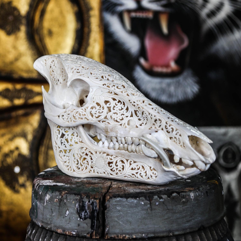 Hand Carved Wild Boar Skull Real Pig/ Animal Skull Bone ...