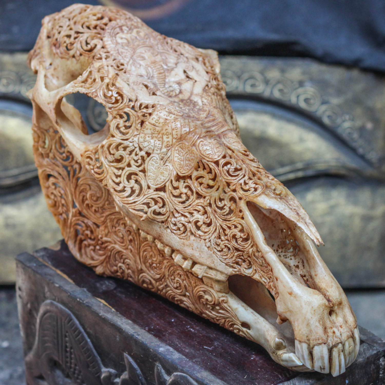 Hand carved horse skull real mule ganesha animal