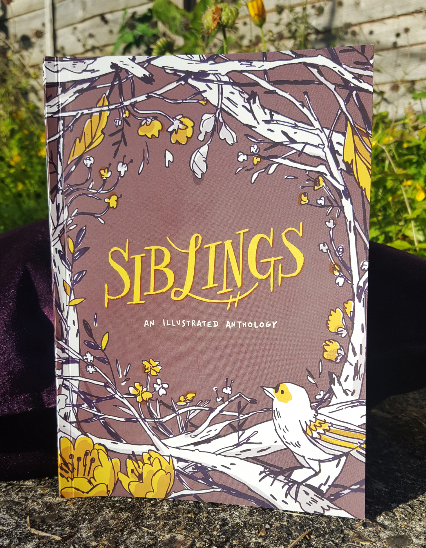 PDF - Siblings: An Illustrated Anthology Vol. 1