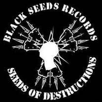 34f8da56be2 Home · Black Seeds Records Merch · Online Store Powered by Storenvy